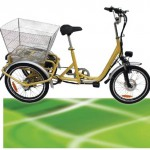 250W ElektroDreirad Elektro Dreirad Elektrofahrrad Li-ion Akku bis 25km/h