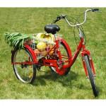 DXP Neu Dreirad Für Erwachsene Seniorenrad 24