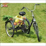 ZNL Seniorenrad FANO-TEC Dreirad Für Erwachsene Lastenfahrrad 24